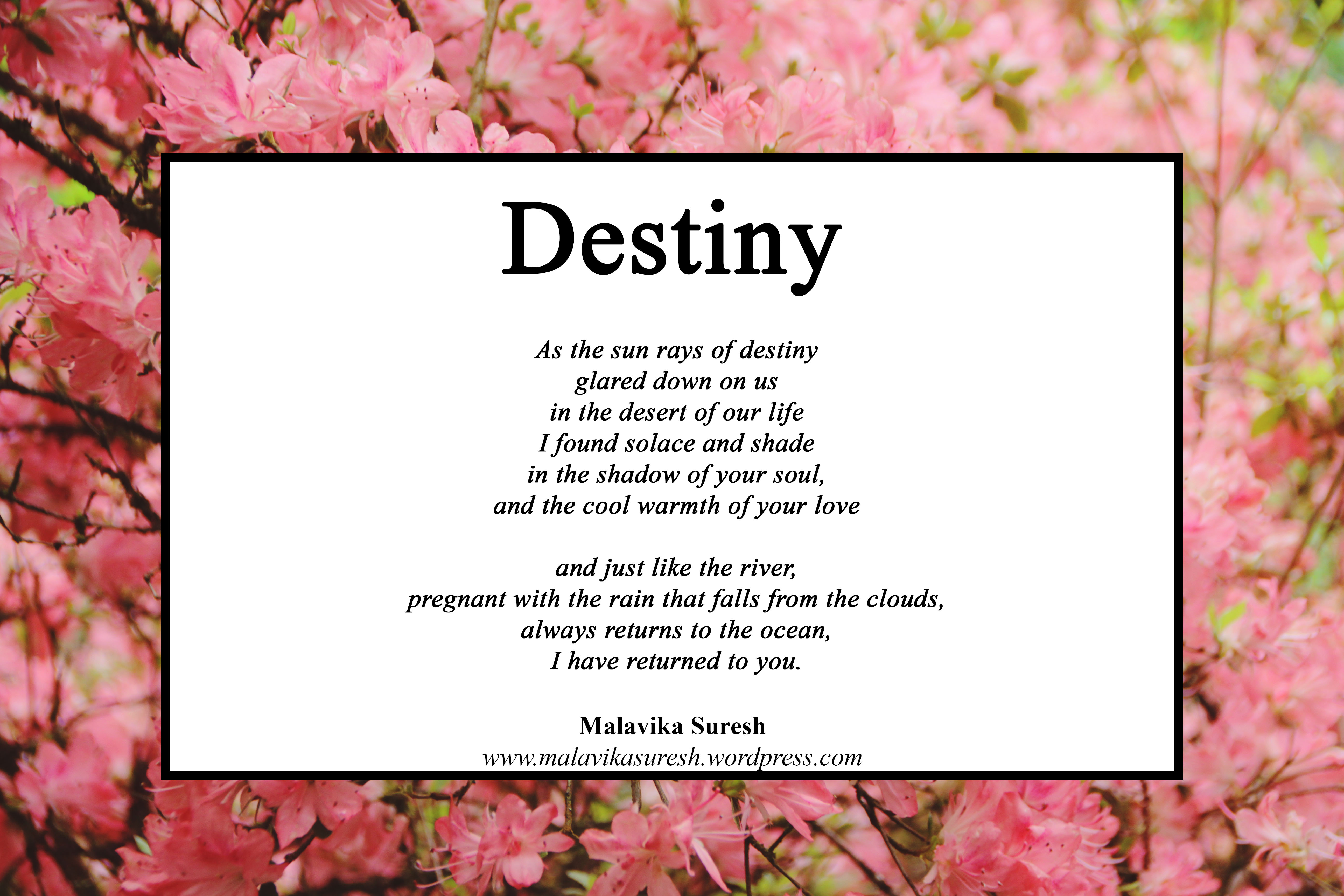Poetry Friday My Destiny Is You Malavika Suresh